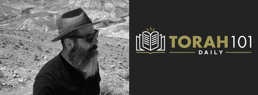 Torah 101 Daily