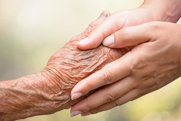 A Servant's Hand